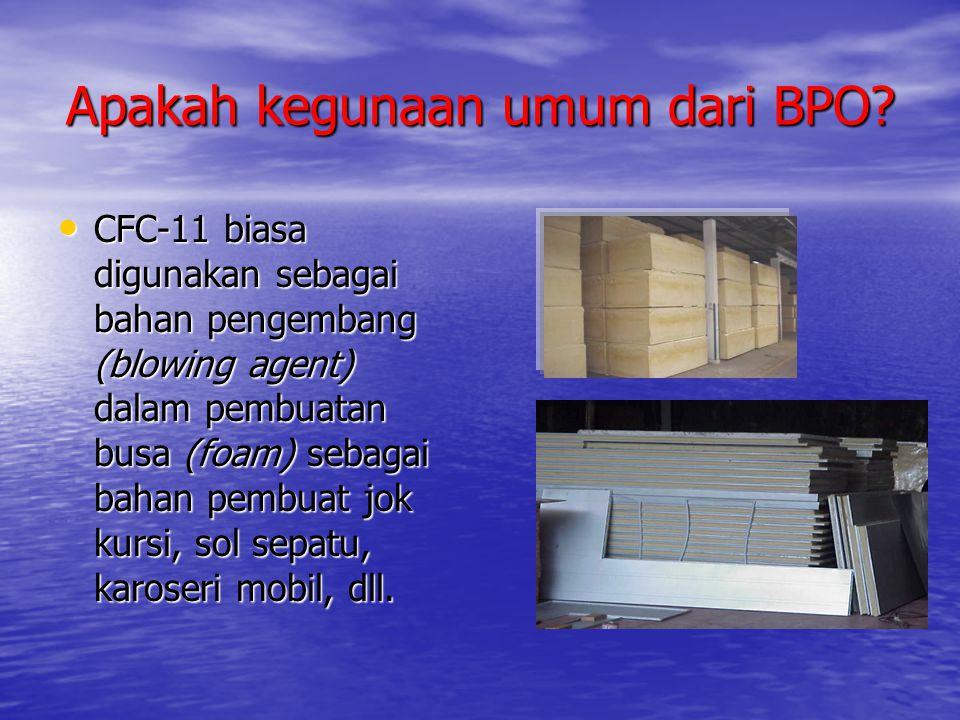 Apakah kegunaan umum dari BPO