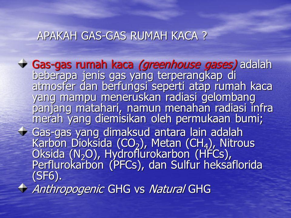 APAKAH GAS-GAS RUMAH KACA