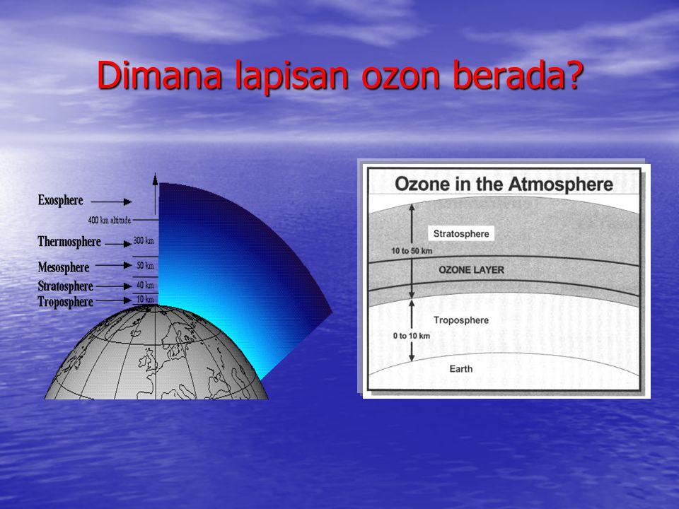 Dimana lapisan ozon berada