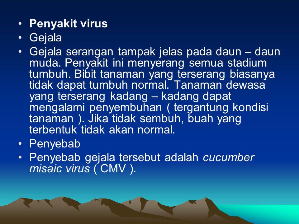 Penyakit virus Gejala.
