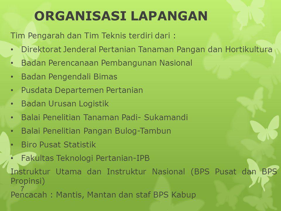 ORGANISASI LAPANGAN Tim Pengarah dan Tim Teknis terdiri dari :