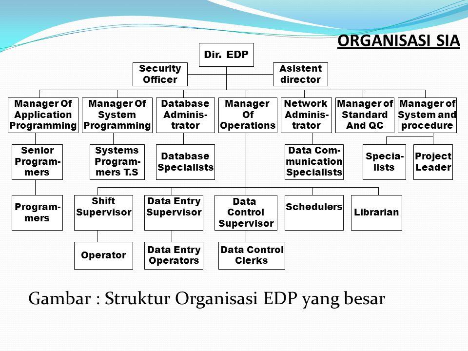 Gambar : Struktur Organisasi EDP yang besar