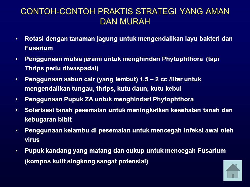 CONTOH-CONTOH PRAKTIS STRATEGI YANG AMAN DAN MURAH