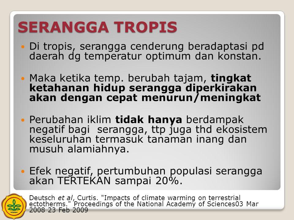 SERANGGA TROPIS Di tropis, serangga cenderung beradaptasi pd daerah dg temperatur optimum dan konstan.