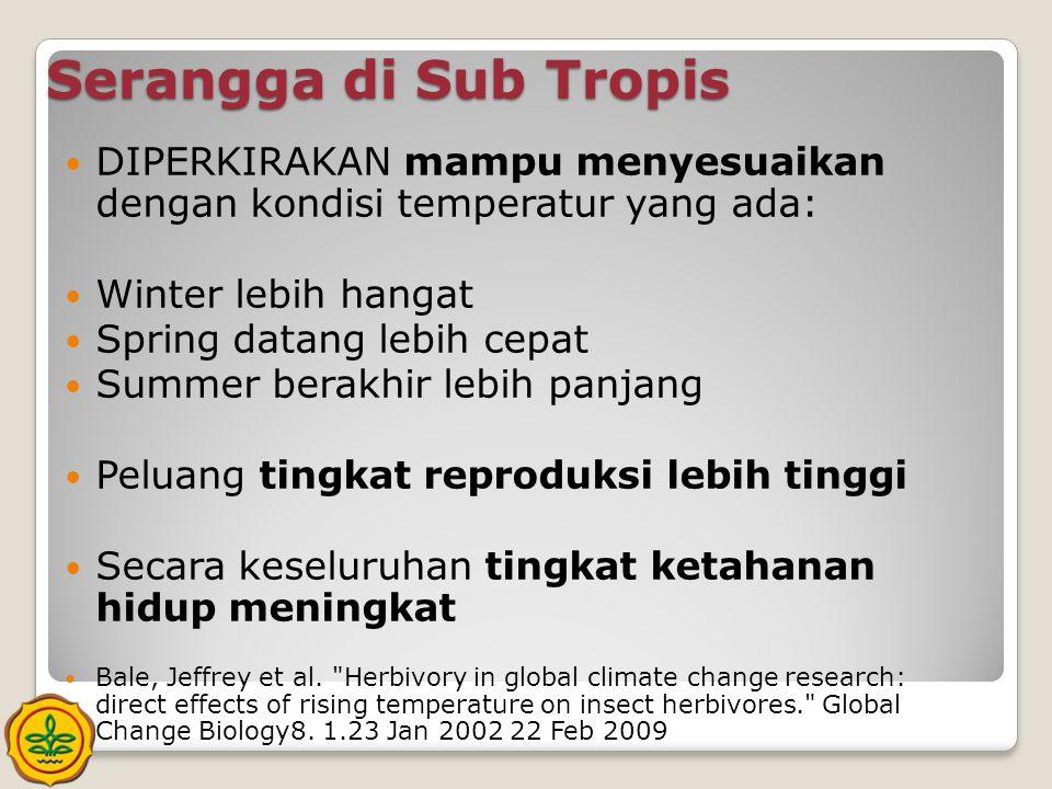 Serangga di Sub Tropis DIPERKIRAKAN mampu menyesuaikan dengan kondisi temperatur yang ada: Winter lebih hangat.