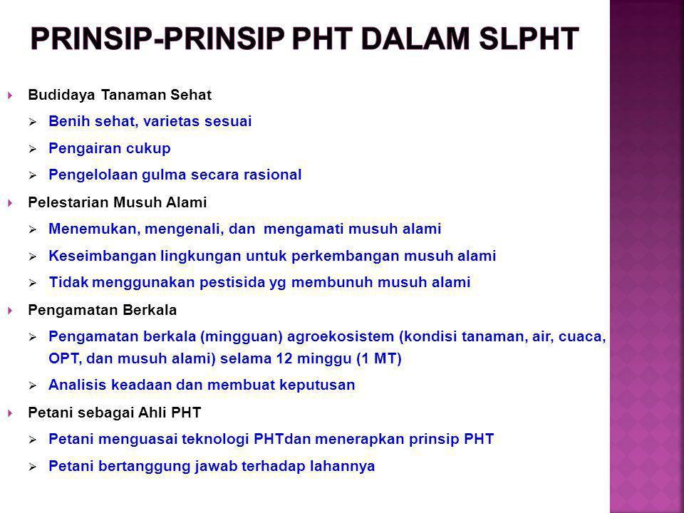 PRINSIP-PRINSIP PHT DALAM SLPHT