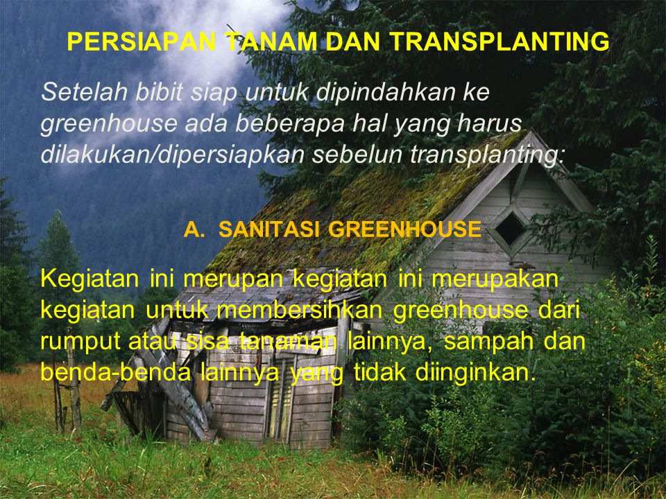 PERSIAPAN TANAM DAN TRANSPLANTING