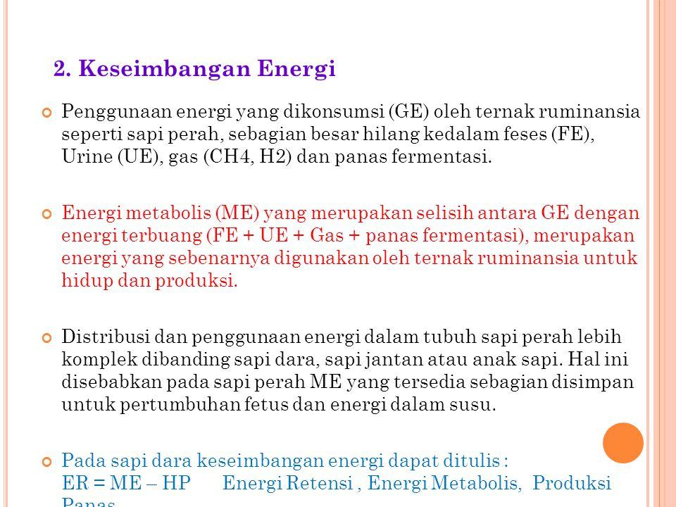 2. Keseimbangan Energi
