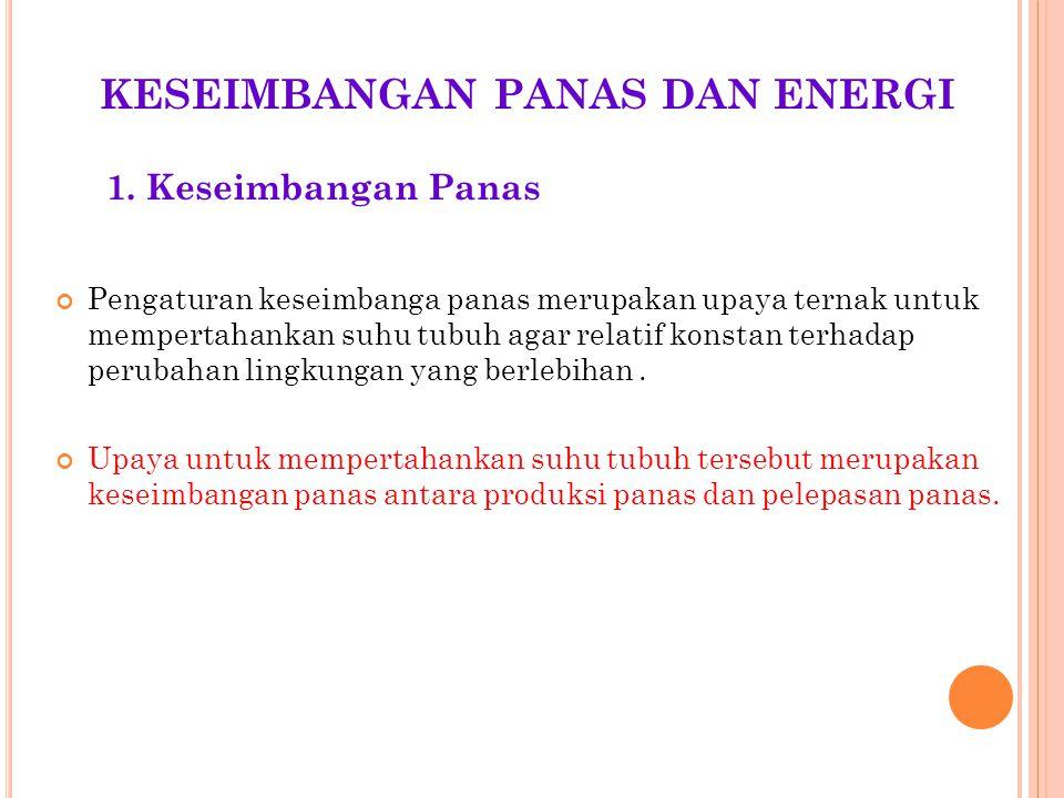 KESEIMBANGAN PANAS DAN ENERGI