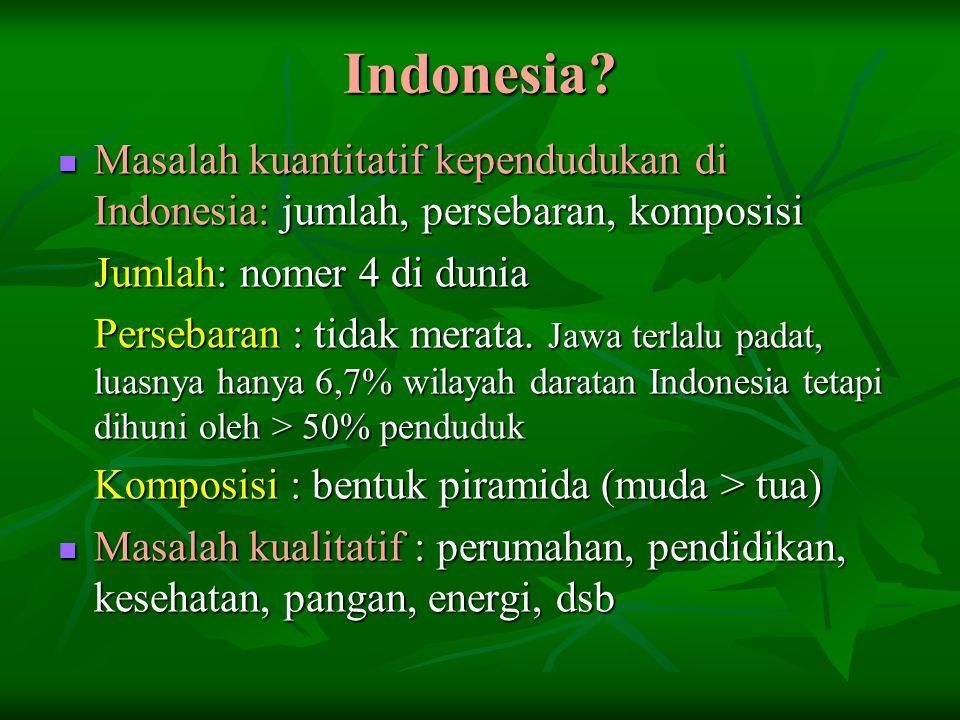 Indonesia Masalah kuantitatif kependudukan di Indonesia: jumlah, persebaran, komposisi. Jumlah: nomer 4 di dunia.