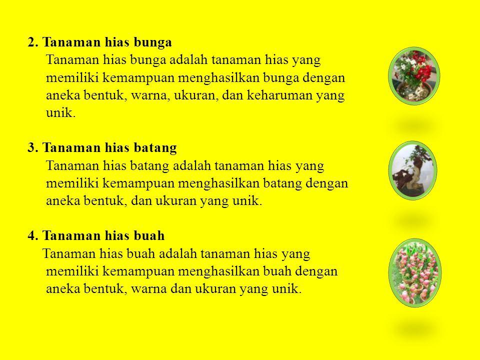 2. Tanaman hias bunga Tanaman hias bunga adalah tanaman hias yang. memiliki kemampuan menghasilkan bunga dengan.