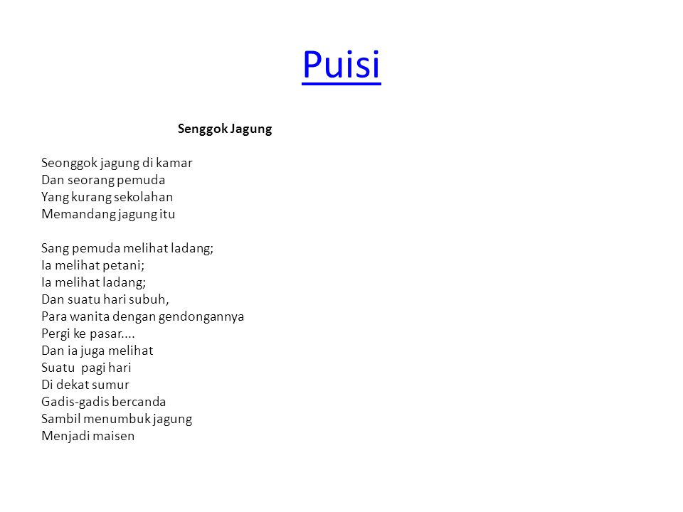 Puisi Senggok Jagung Seonggok jagung di kamar Dan seorang pemuda