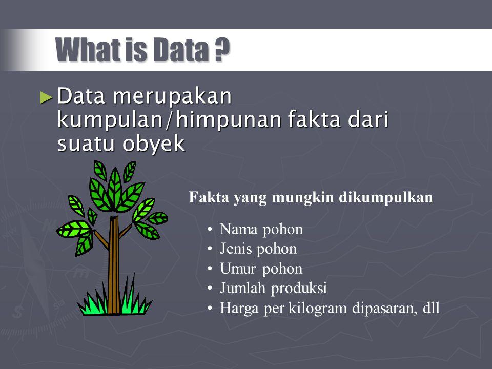 What is Data Data merupakan kumpulan/himpunan fakta dari suatu obyek