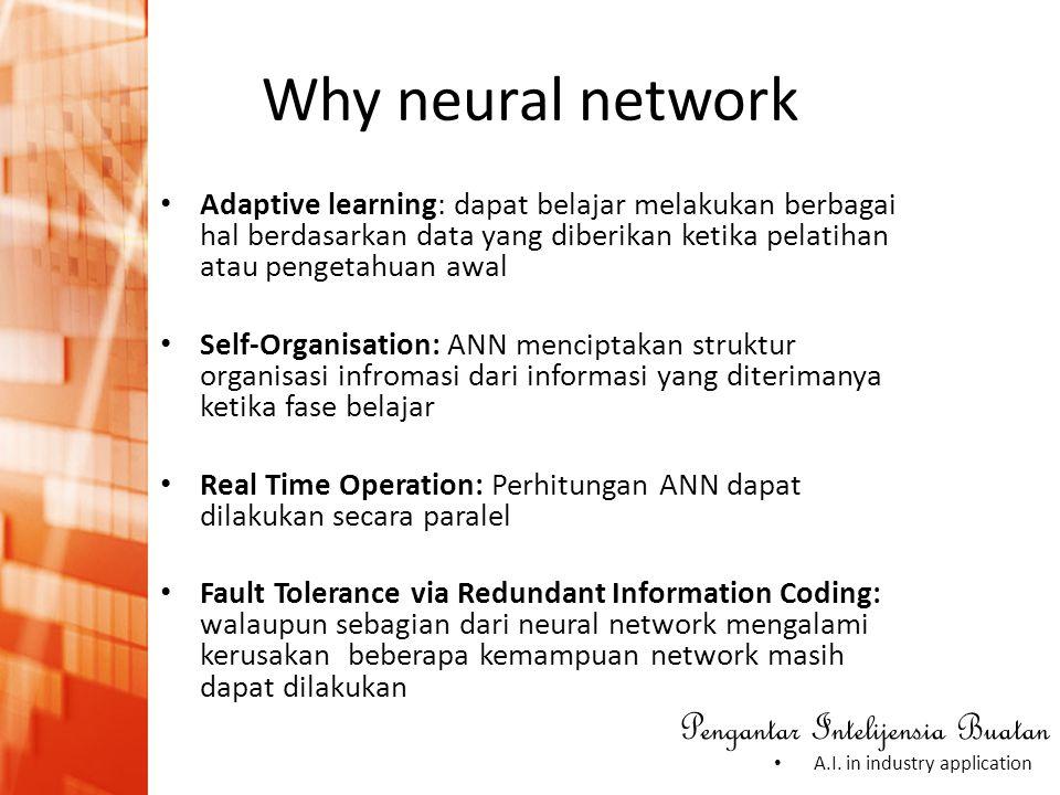 Why neural network Adaptive learning: dapat belajar melakukan berbagai hal berdasarkan data yang diberikan ketika pelatihan atau pengetahuan awal.