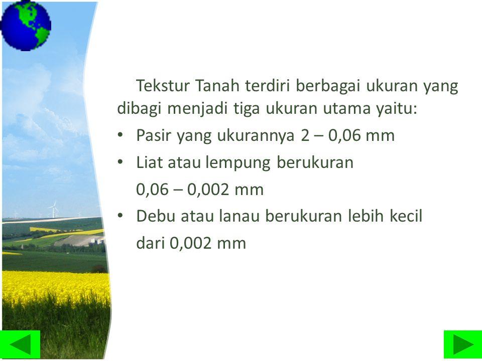 Tekstur Tanah terdiri berbagai ukuran yang dibagi menjadi tiga ukuran utama yaitu: