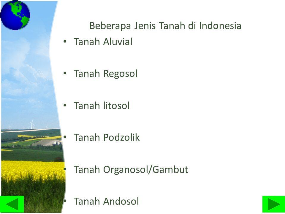 Beberapa Jenis Tanah di Indonesia