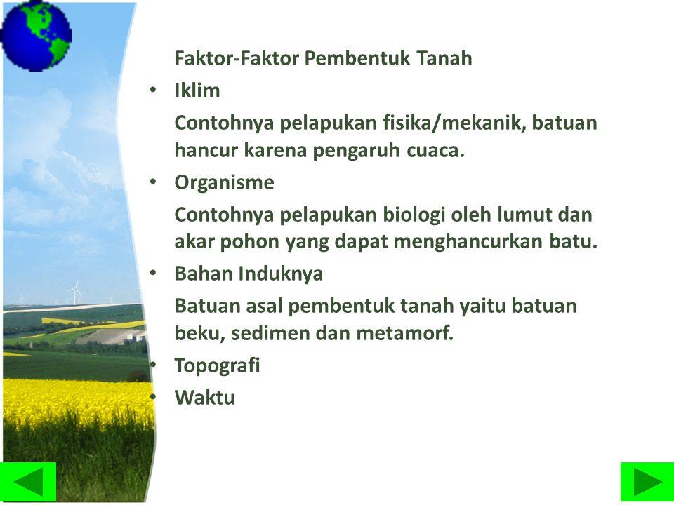 Faktor-Faktor Pembentuk Tanah