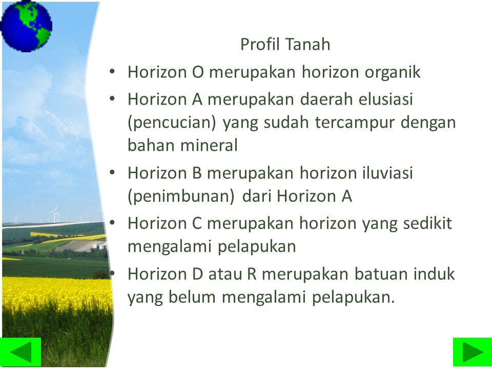 Profil Tanah Horizon O merupakan horizon organik. Horizon A merupakan daerah elusiasi (pencucian) yang sudah tercampur dengan bahan mineral.