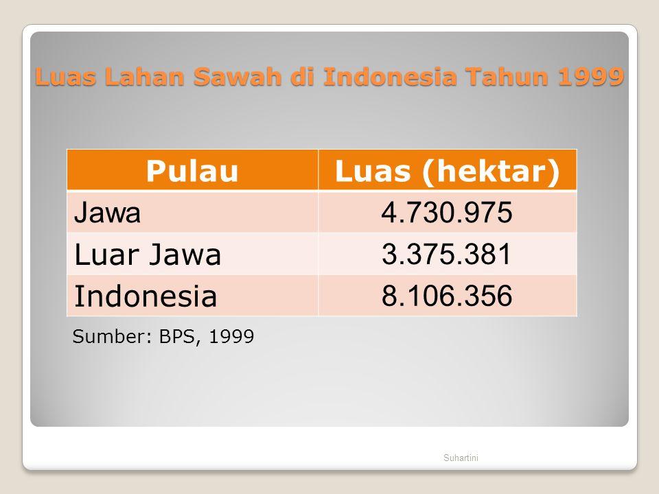 Luas Lahan Sawah di Indonesia Tahun 1999