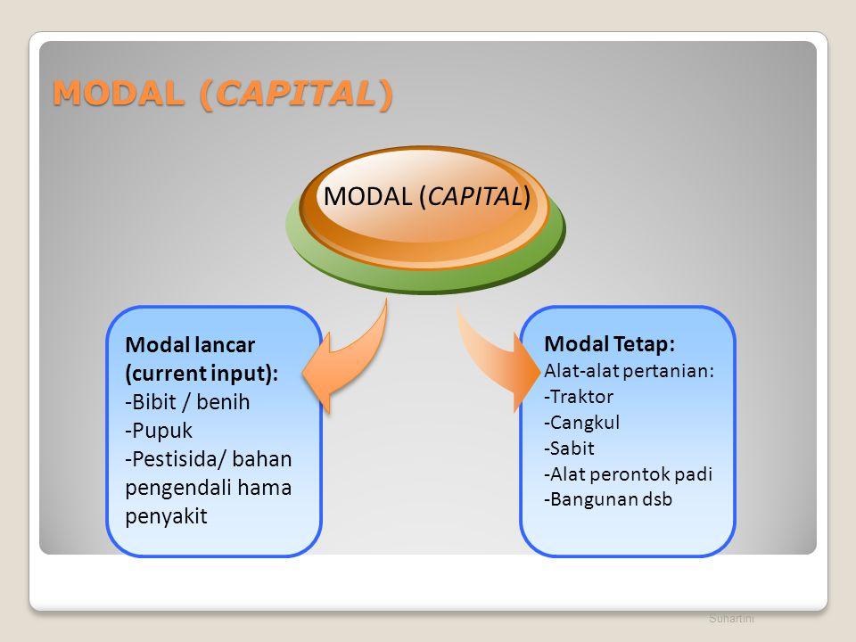 MODAL (CAPITAL) MODAL (CAPITAL) Modal lancar (current input):