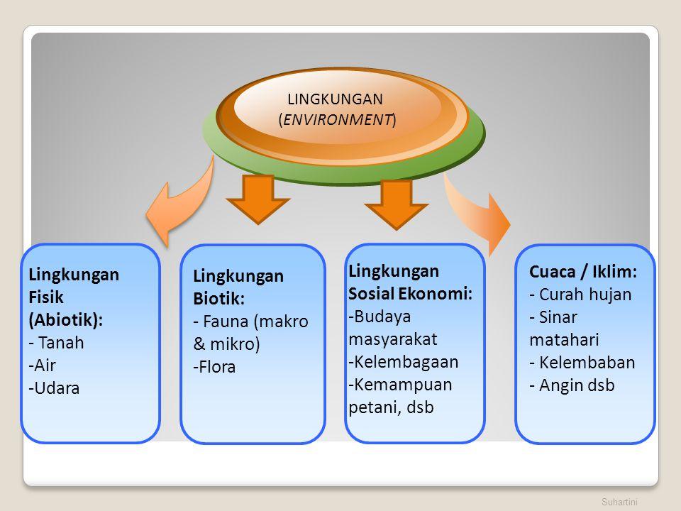 Lingkungan Fisik (Abiotik):