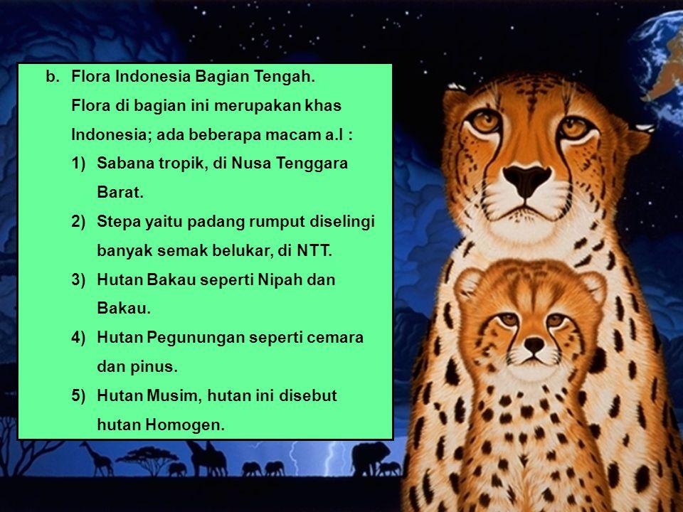 b. Flora Indonesia Bagian Tengah.