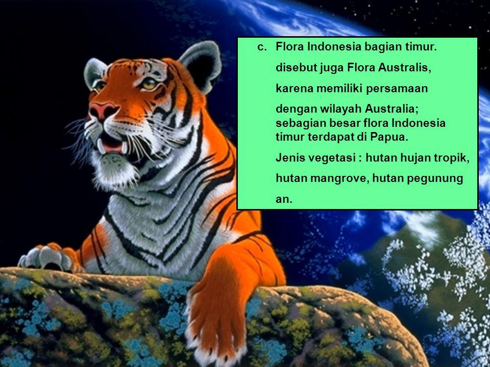 c. Flora Indonesia bagian timur.
