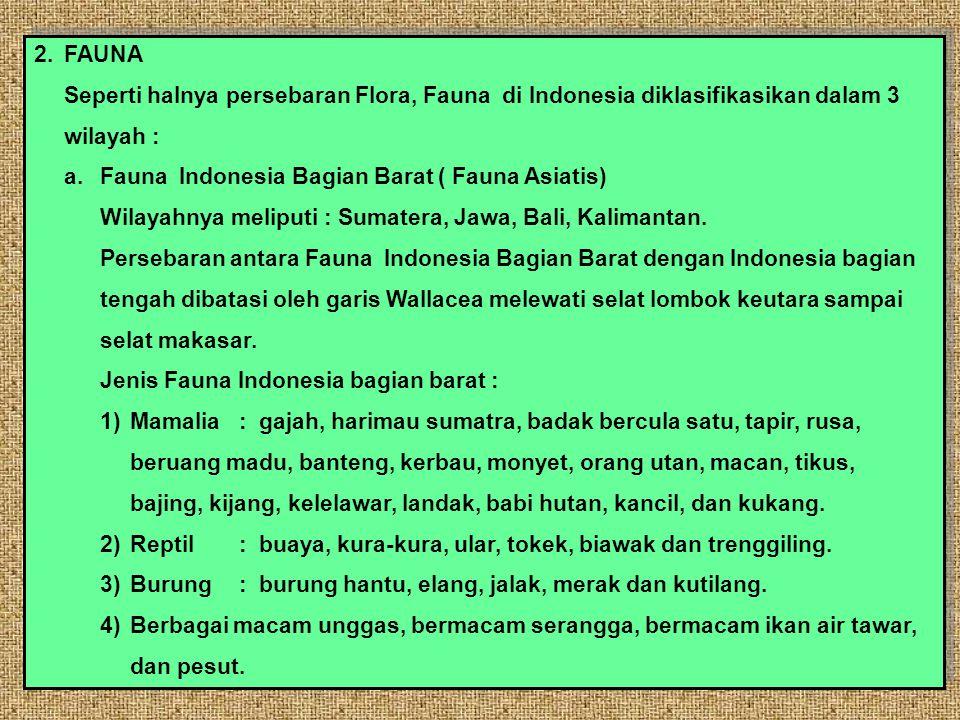 2. FAUNA Seperti halnya persebaran Flora, Fauna di Indonesia diklasifikasikan dalam 3. wilayah : a. Fauna Indonesia Bagian Barat ( Fauna Asiatis)