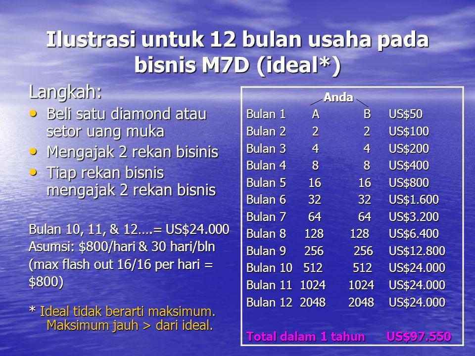 Ilustrasi untuk 12 bulan usaha pada bisnis M7D (ideal*)