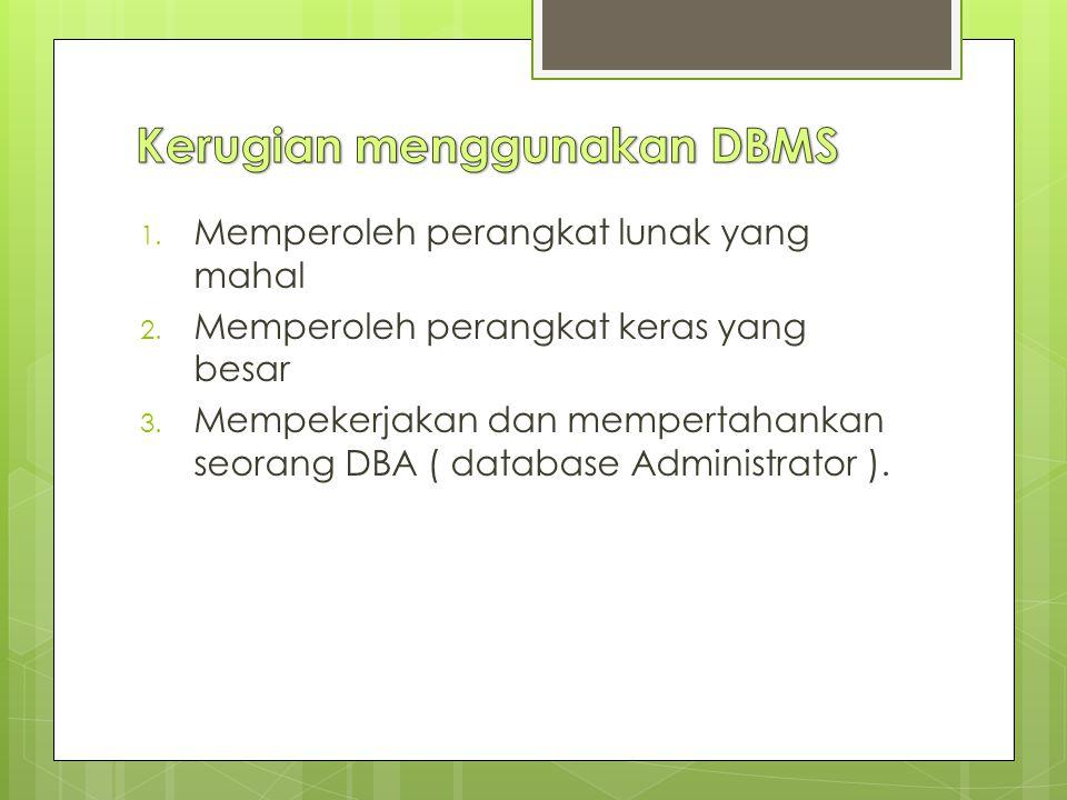 Kerugian menggunakan DBMS