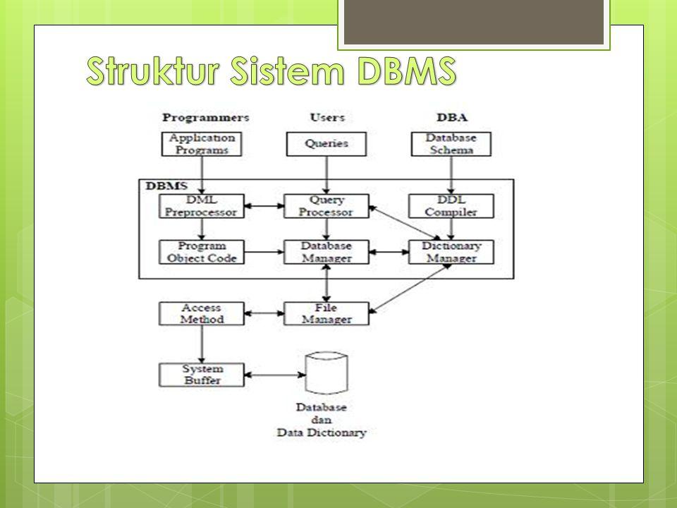 Struktur Sistem DBMS