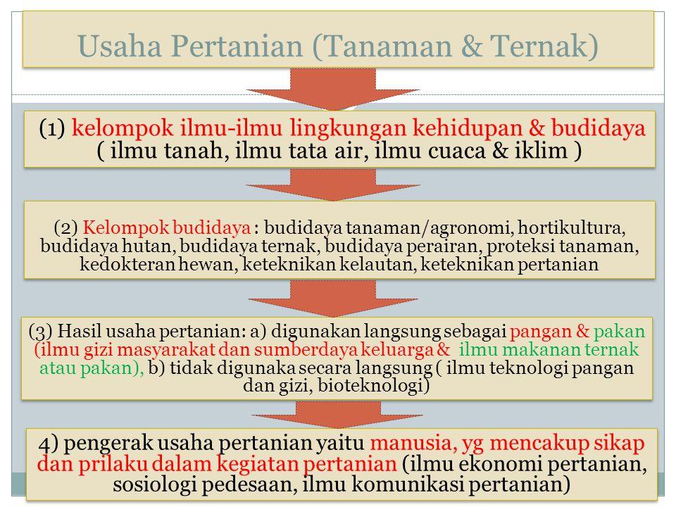 Usaha Pertanian (Tanaman & Ternak)