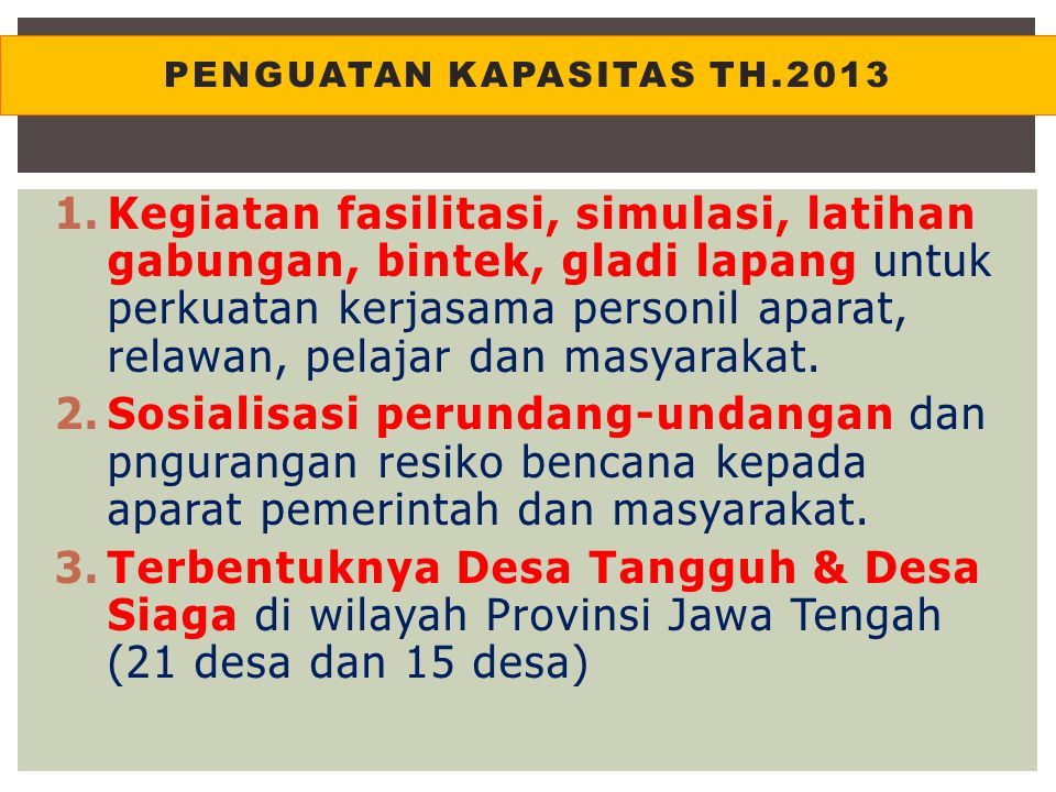 Penguatan kapasitas th.2013