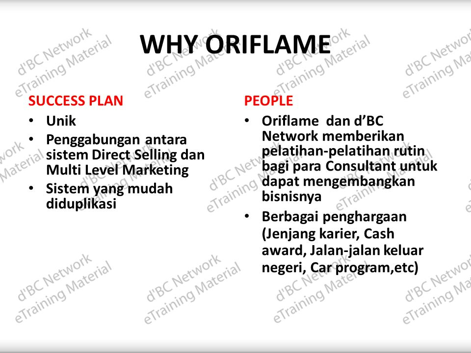 WHY ORIFLAME SUCCESS PLAN PEOPLE Unik