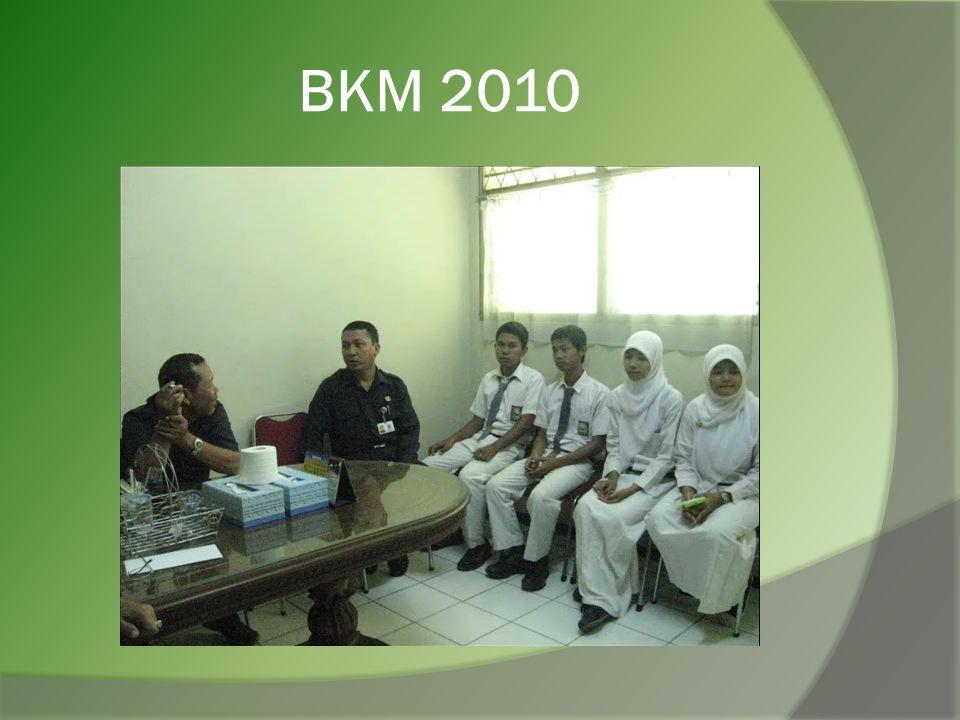 BKM 2010