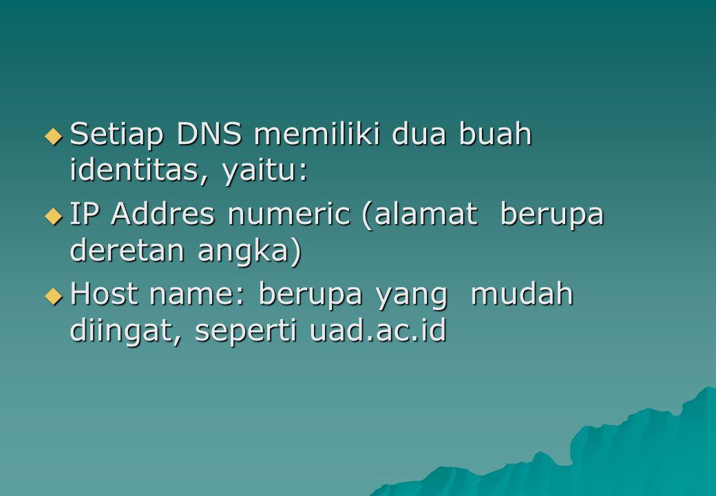 Setiap DNS memiliki dua buah identitas, yaitu: