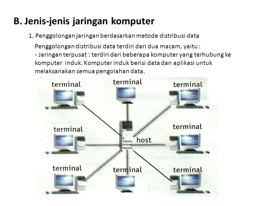 B. Jenis-jenis jaringan komputer