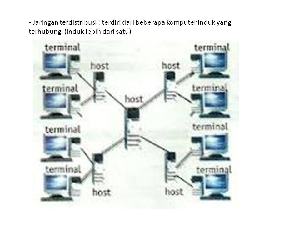 - Jaringan terdistribusi : terdiri dari beberapa komputer induk yang terhubung.