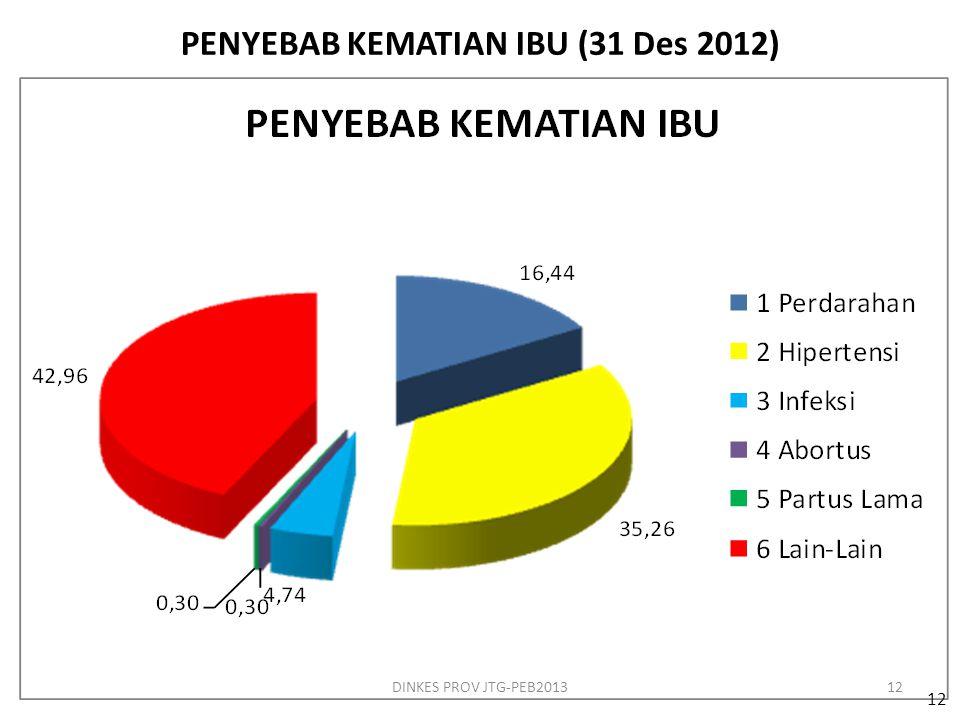 PENYEBAB KEMATIAN IBU (31 Des 2012)