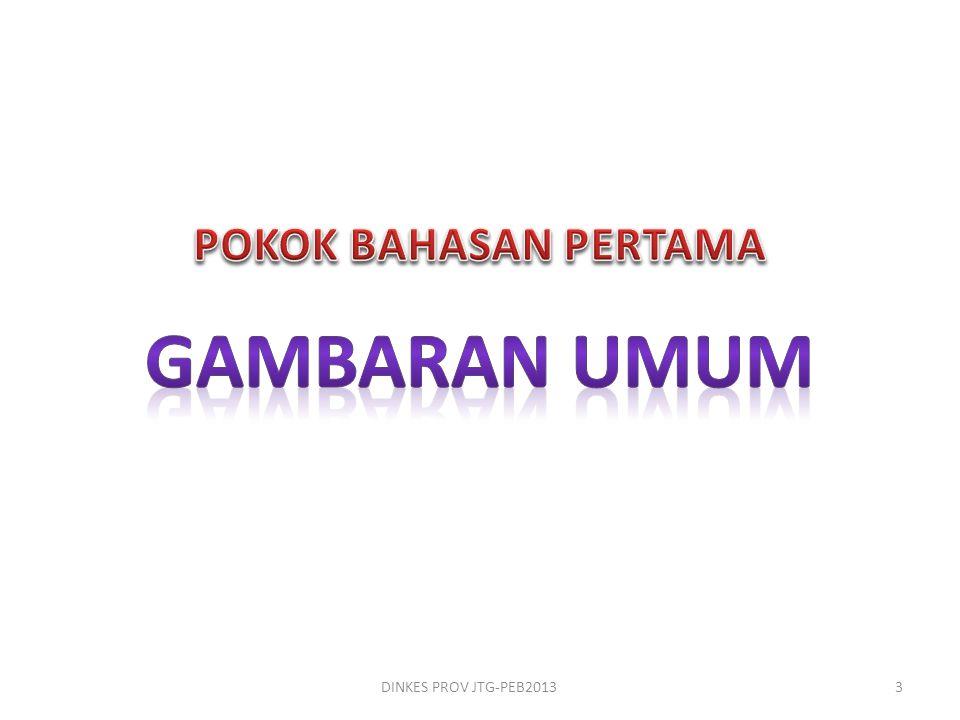 POKOK BAHASAN PERTAMA GAMBARAN UMUM DINKES PROV JTG-PEB2013