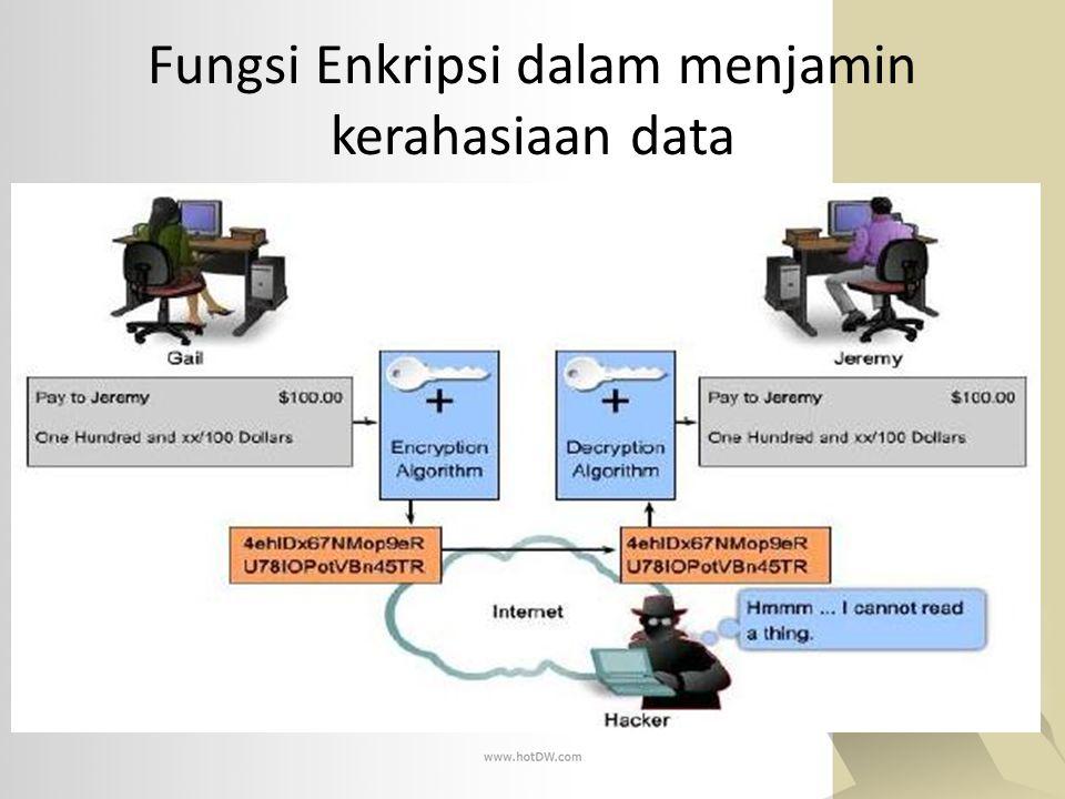 Fungsi Enkripsi dalam menjamin kerahasiaan data