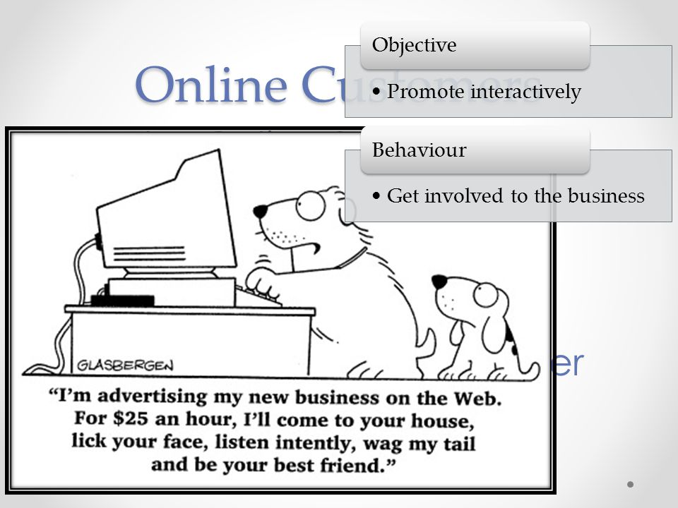 Online Customers The Online Surfer The Online Customer