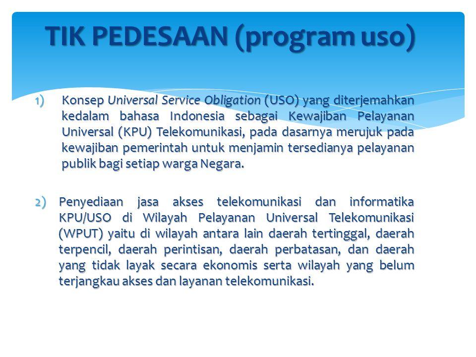 TIK PEDESAAN (program uso)