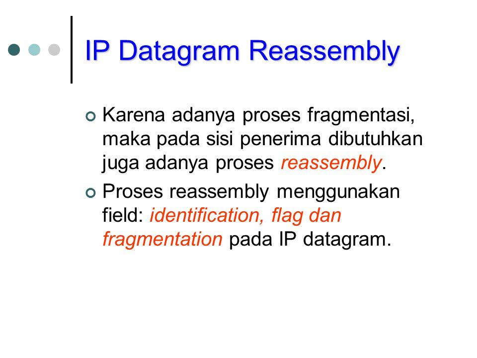 IP Datagram Reassembly