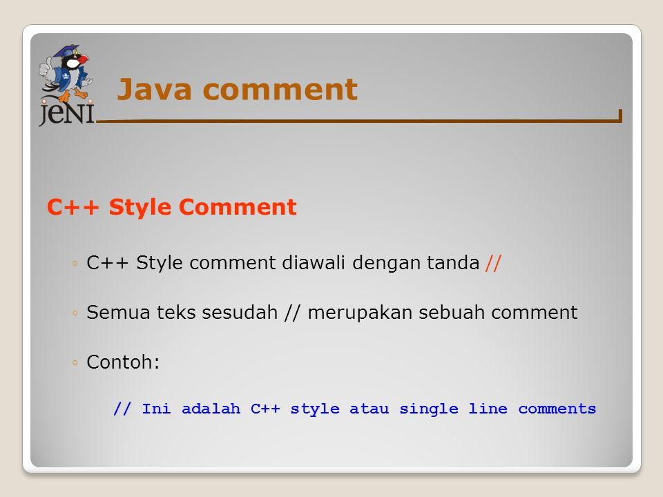 Java comment C++ Style Comment