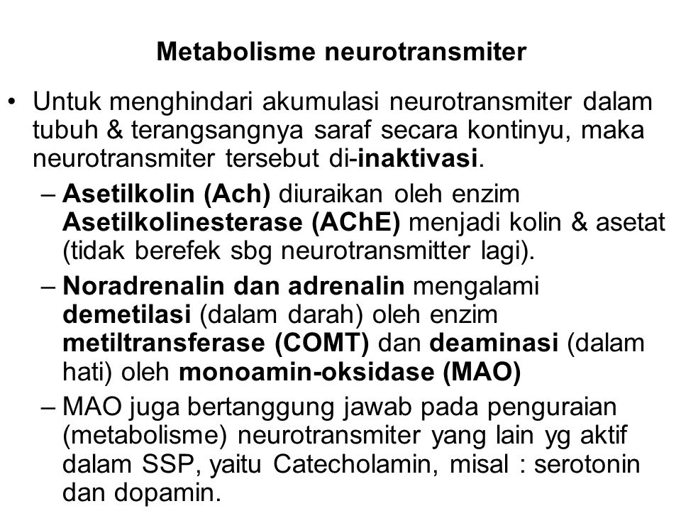 Metabolisme neurotransmiter