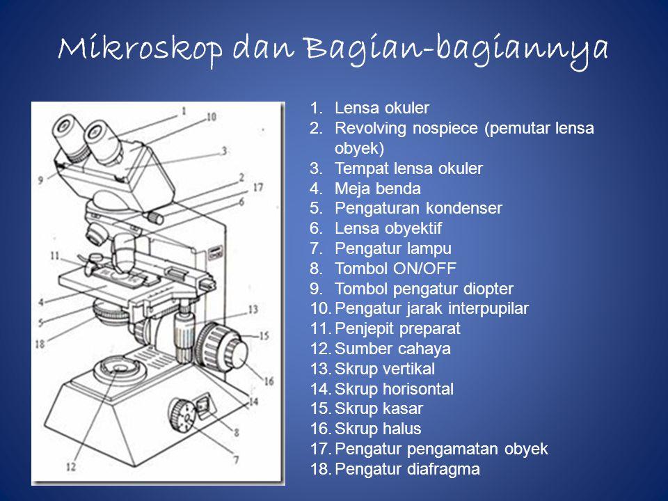 Mikroskop dan Bagian-bagiannya
