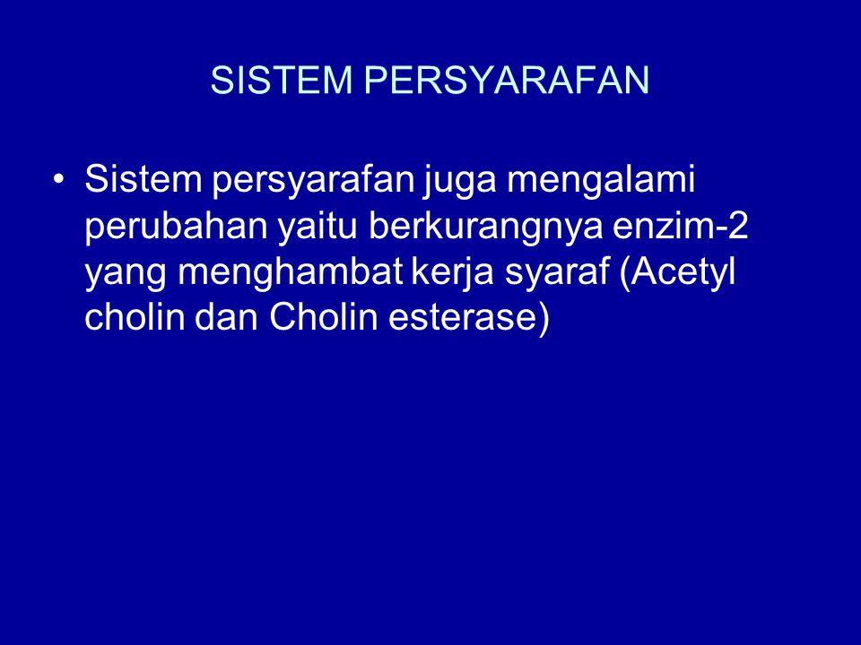 SISTEM PERSYARAFAN