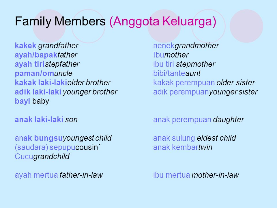 Family Members (Anggota Keluarga)