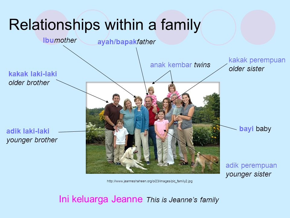 Relationships within a family